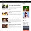 Blogger Website Template   Blogging Website Template