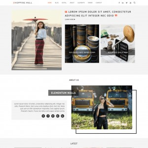 website templates with shopping cart