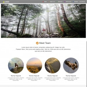 Software Company Website Template Free Download