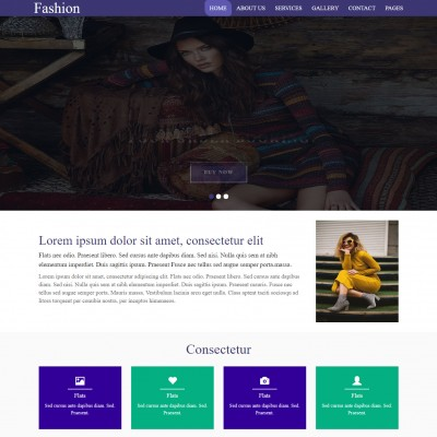 Fashion Designing Website Templates Templateonweb